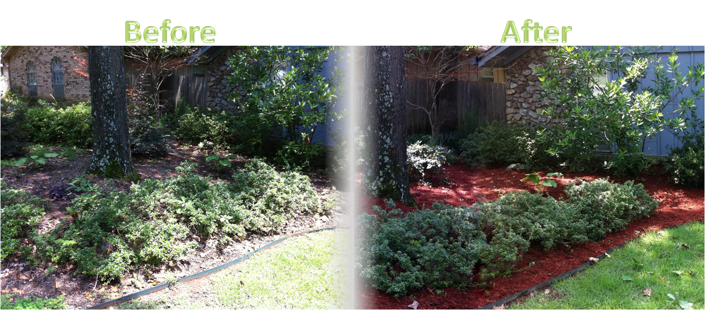 Lawnserve of AR Shrub Trimming and Mulch Before and After
