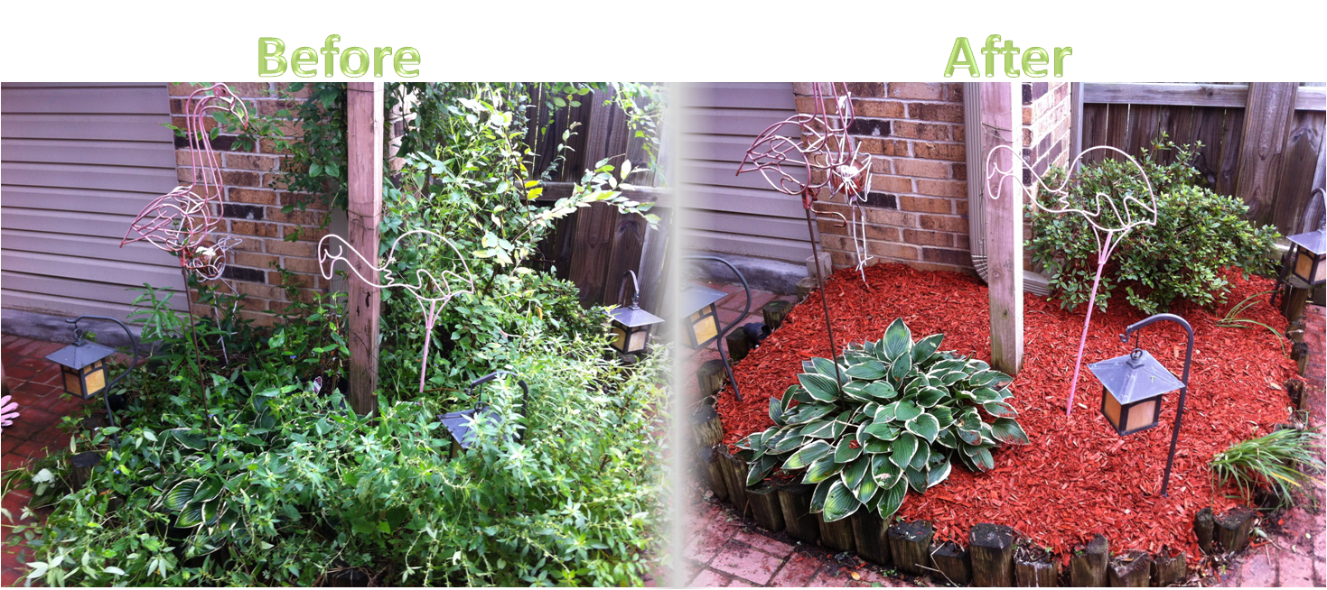 Lawnserve of AR Mulch Before and After