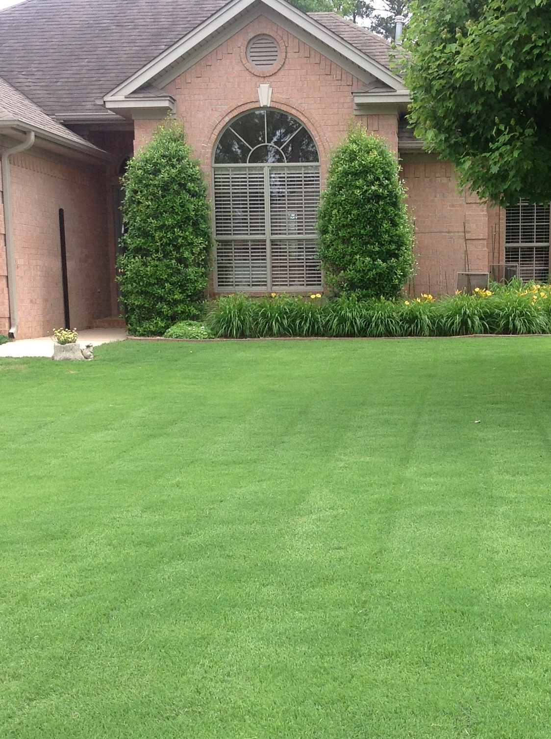Little Rock Lawn Care Service Maumelle Conway North Little Rock Benton Bryant