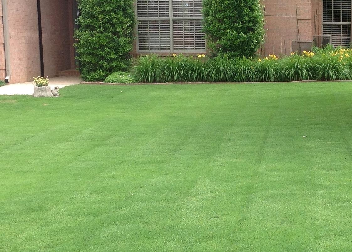 Lawnserve of AR Freshly Cut Lawn